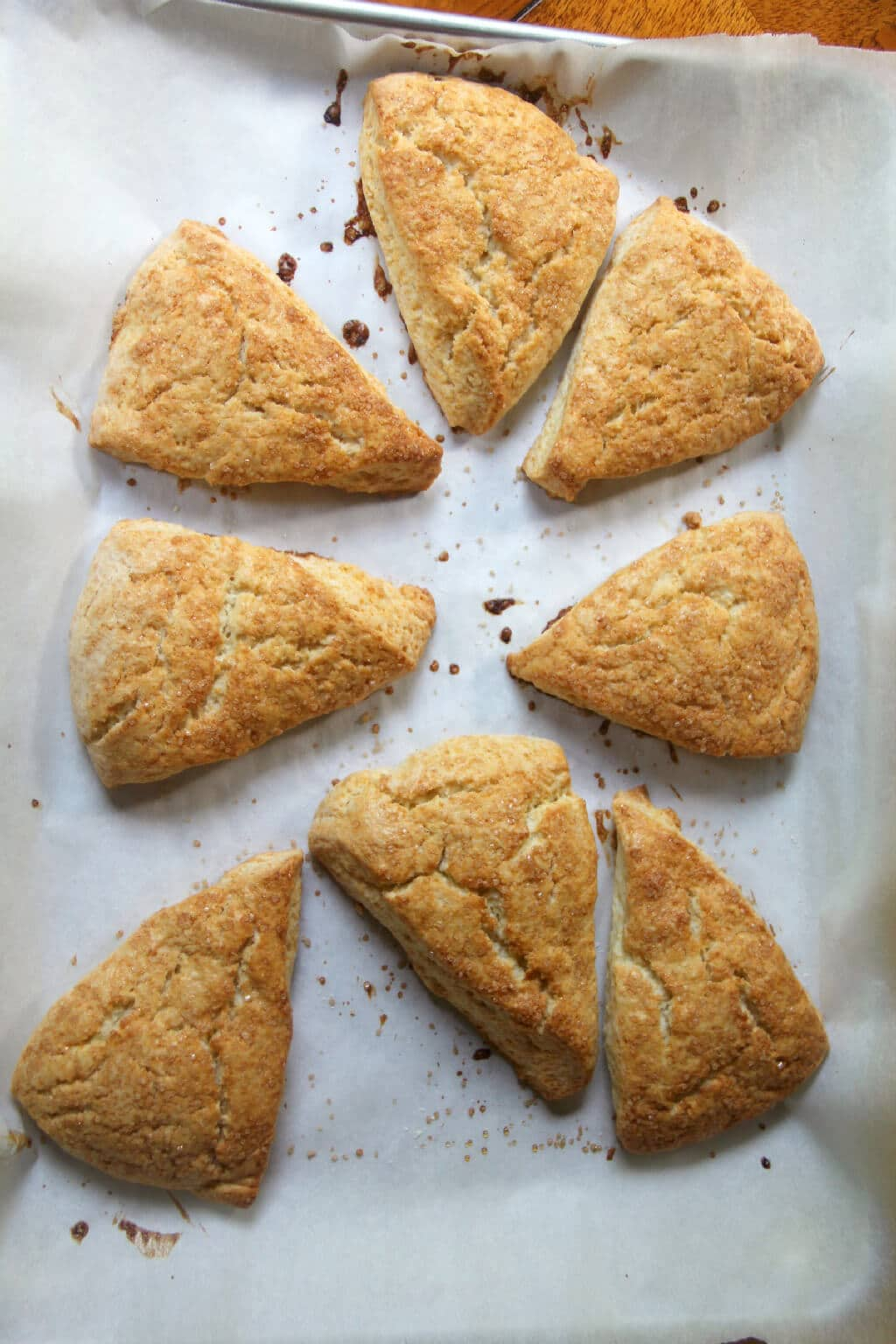 Cream scones are butter-rich and slightly sweet, a lovely vessel for your favorite jam--breakfast, afternoon snack, or anything in between!