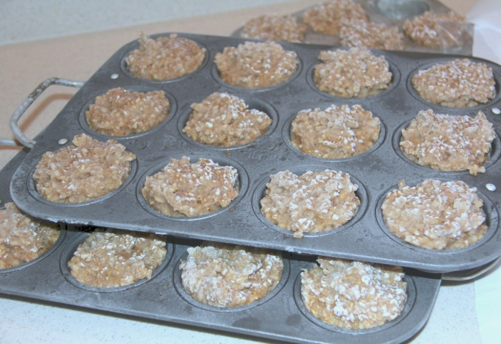 Oatmeal in Muffin Tins