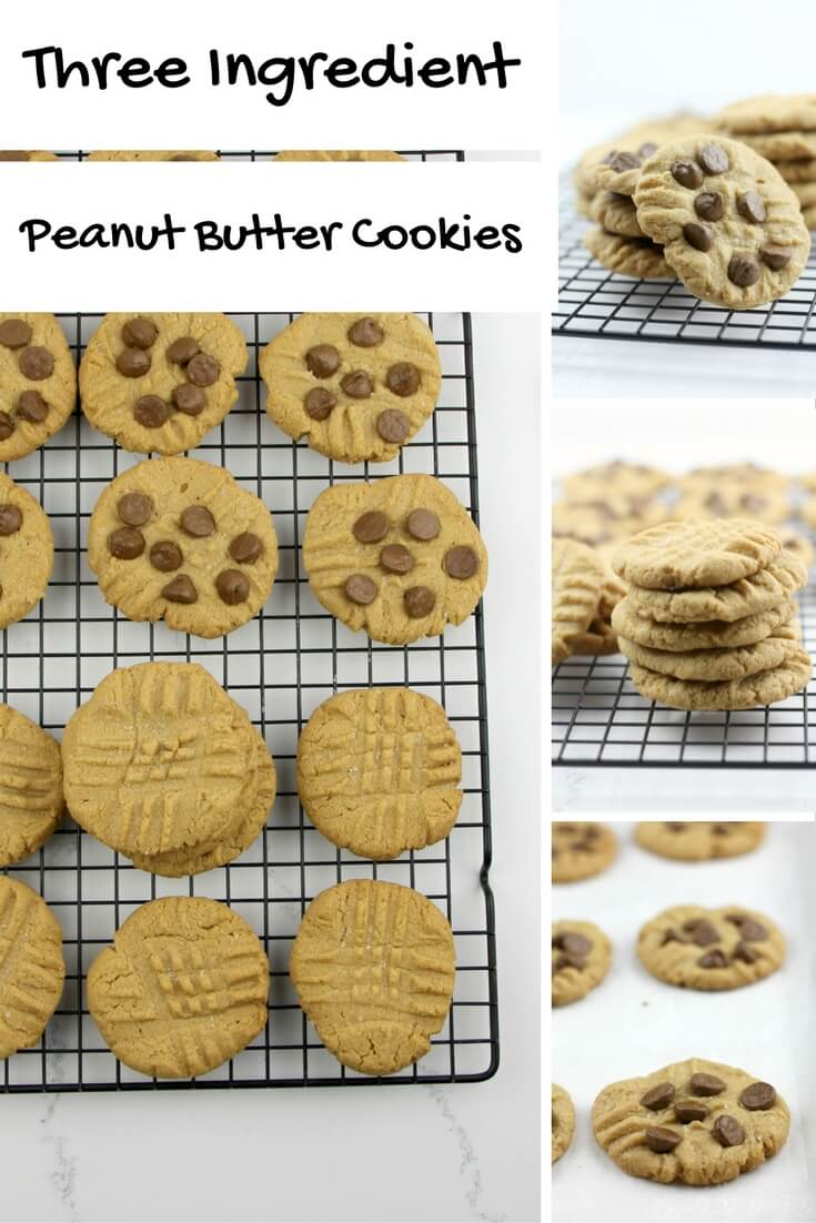 Three Ingredient Peanut Butter Cookies, also known as flourless peanut butter cookies, are gluten-free, dairy-free, and really tasty! They're the easiest peanut butter cookies you'll ever make!