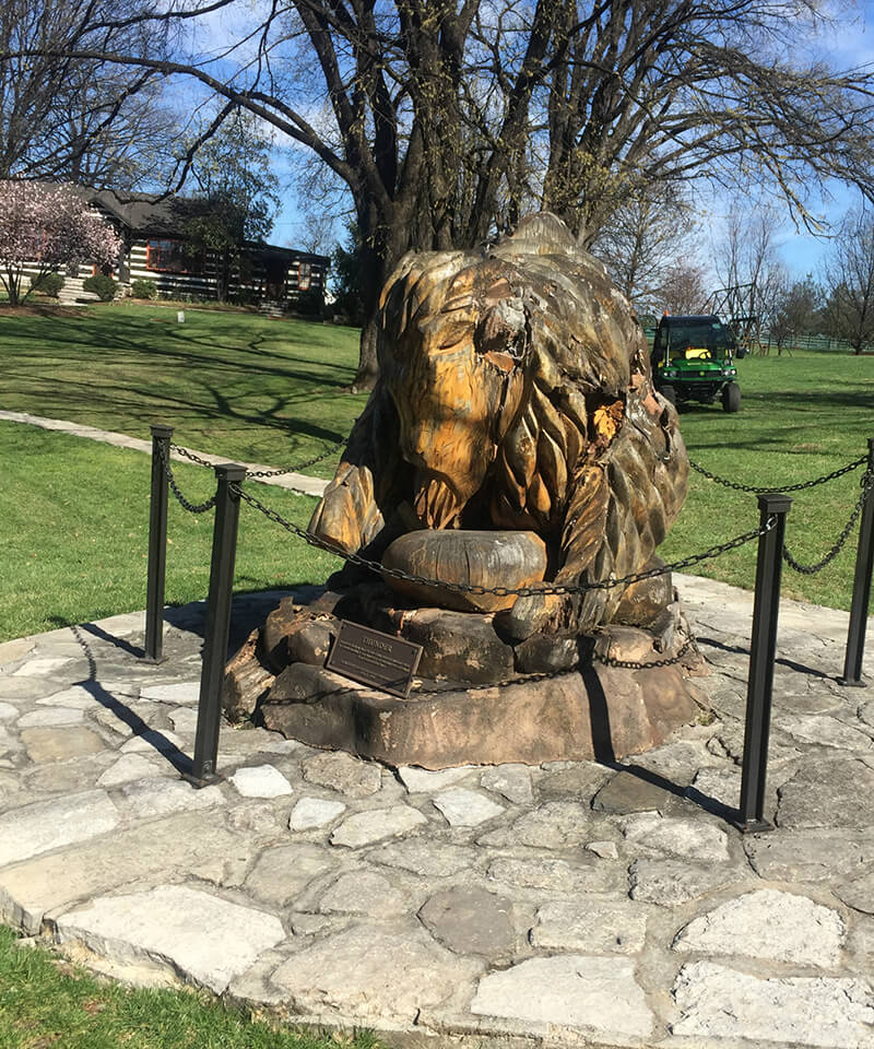 Kentucky Travel Guide showing A hand carved buffalo at the Buffalo Trace Distillery.