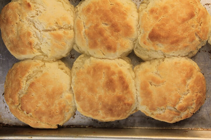 Overhead of a pan of baked homemade buttermilk biscuits.