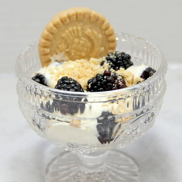 A bowl of berries and lemon pastry cream with a shortbread cookie.