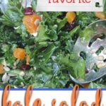 Easy Kale Salad with Mango Chutney Dressing is simple, elegant, healthy, and delicious! Filled with assorted dried fruit and toasted sunflower seeds, this salad is a pretty addition to any meal.