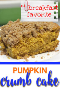 Pumpkin Crumb Cake is sweet and fragrant from notes of allspice, nutmeg, ginger, cloves, and cinnamon. It's great for morning coffee or after dinner.