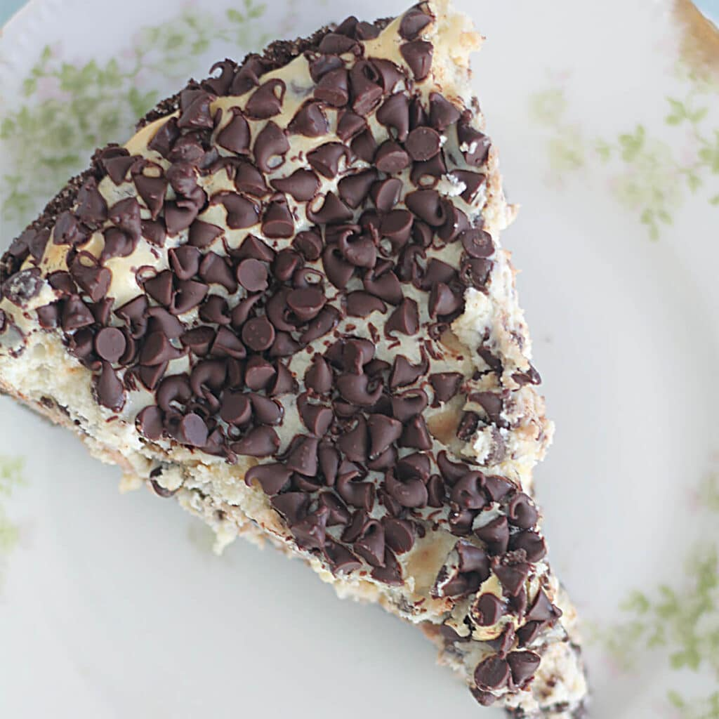 Overhead photo of a slice of chocolate chip cheesecake on a floral plate.